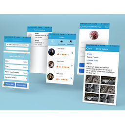 Mobile application for car-sharing and hand-picked driver search