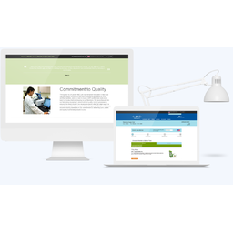 DEVELOPMENT OF A WEBSITE FOR DISTRIBUTION OF PRODUCTS BASED ON THE NETWORK MARKETING MODEL