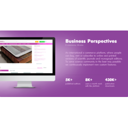 Business Perspectives - eCommerce