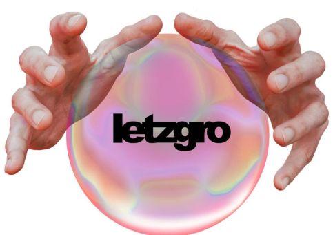 Letzgro Inc